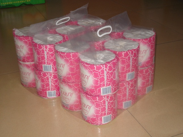 Recycled toilet rolls